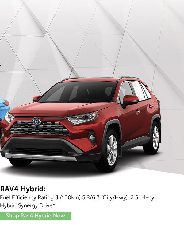 Rav 4 Hybrid
