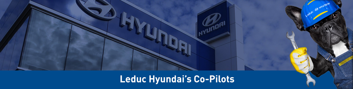 Leduc Hyundai's Co-Pilots