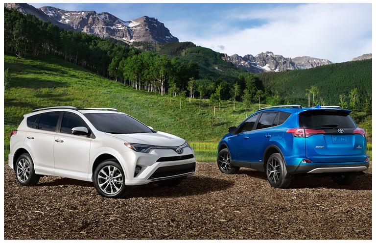 2017 Toyota Rav4 Cargo Net Hammock Upcomingcarshq Com